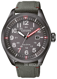 Citizen Black/Leather Ø42.6 mm AW5005-39H